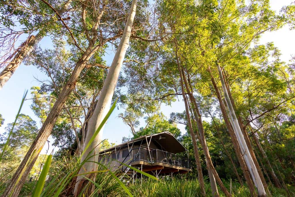 best glamping south east queensland