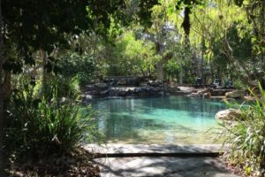10+ Awesome Glamping North Queensland Spots