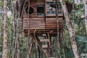 5 Amazing Treehouses in BC to Rent this Summer