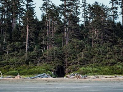 Top 5 Vancouver Island Glamping Spots To Visit This Summer